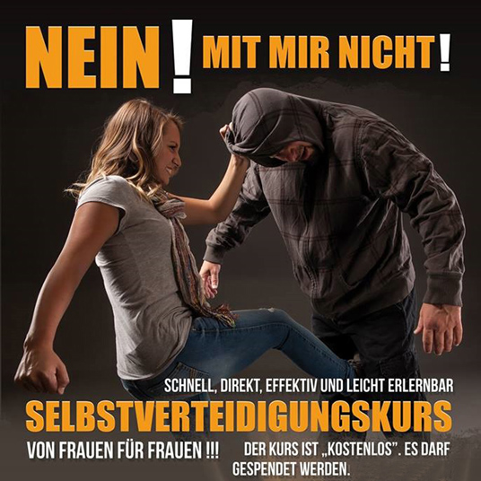 Kampfsportler gegen Gewalt-Spendenkampagne für das Frauenhaus Berlin